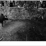 """Las """"Miradas"""" de Julián de la Mata ganan el XXI Concurso Fotográfico de San Juan 2011"""