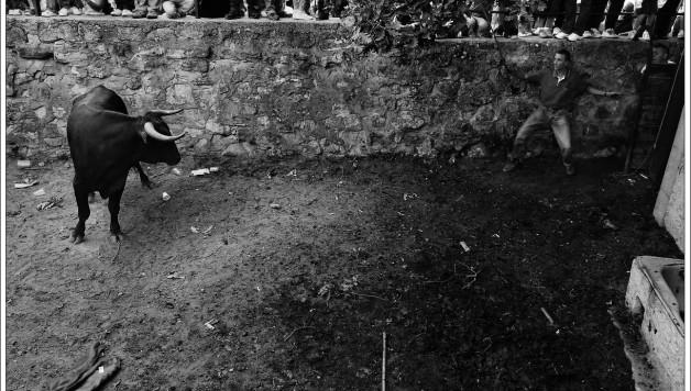 Primer premio XXI Concurso fotográfico Fiestas de San Juan