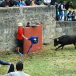 Desencajonamiento 2014: Los toros de San Juan ya están en Soria