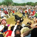 Jueves la Saca 2014: ocho toros llegan a Soria