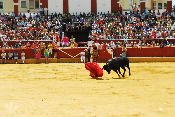 Viernes de Toros 2014