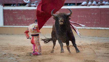 Feria taurina San Juan 2018